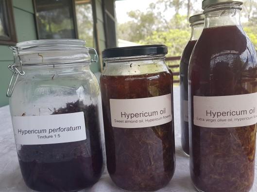 Hypericum oil