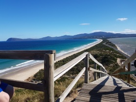Bruny neck