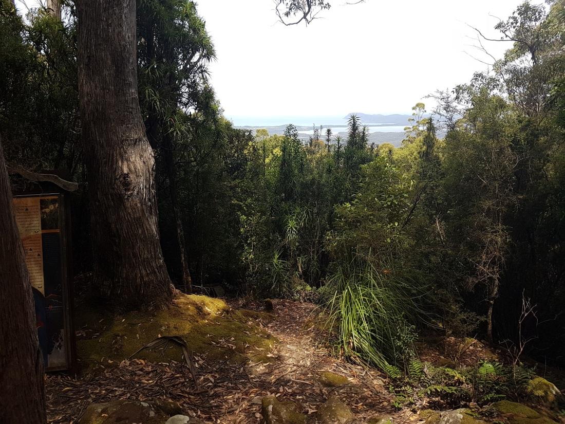 Mt.Mangana view2